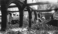 Löwen Bibliothek 1914