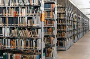 Abb. 5: Buchbestände der BfZ zum Ersten Weltkrieg