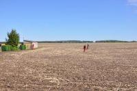 Ein Feld wird mit Bodenradar nach Metallgegenständen abgesucht (Quelle: K. Straub)