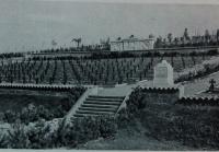 Abbildung 1: Friedhof der 170. Infanterie-Division Karagos, Krim Bundesarchiv RH 26-170/107