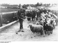 """Originalbildunterschrift: """"Nichts fällt den Sowjets in die Hände"""". (Bundesarchiv, Bild 146-1969-106-37 / Baier / CC-BY-SA 3.0)"""